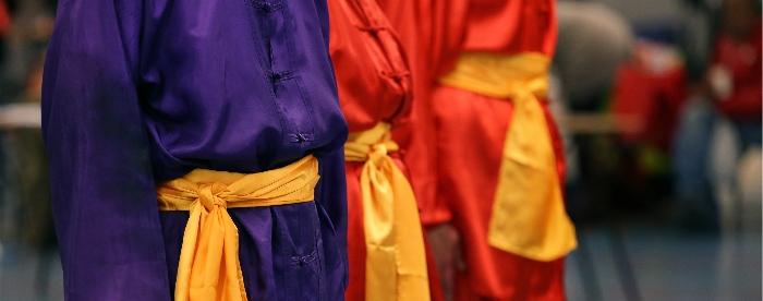 STN: Sinds 1982 hét overkoepelend orgaan voor Taijiquan beoefenaars en leraren.